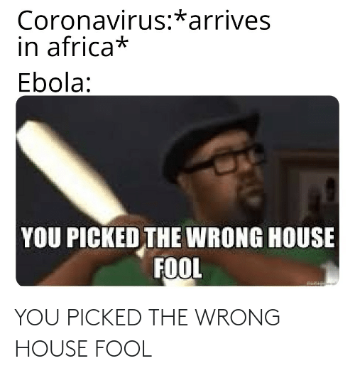 wrong: YOU PICKED THE WRONG HOUSE FOOL