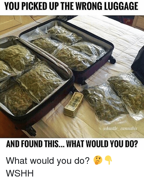 Memes, Wshh, and Luggage: YOU PICKED UP THE WRONG LUGGAGE  ahustle cannabis  AND FOUND THIS... WHAT WOULD YOU DO? What would you do? 🤔👇 WSHH