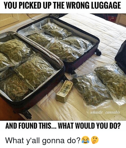 Memes, Luggage, and Cannabis: YOU PICKED UP THE WRONG LUGGAGE  ahustle cannabis  AND FOUND THIS... WHAT WOULD YOU DO? What y'all gonna do?😂🤔