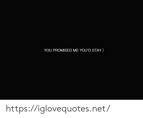 Net, You, and Stay: YOU PROMISED ME YOU'D STAY  https://iglovequotes.net/