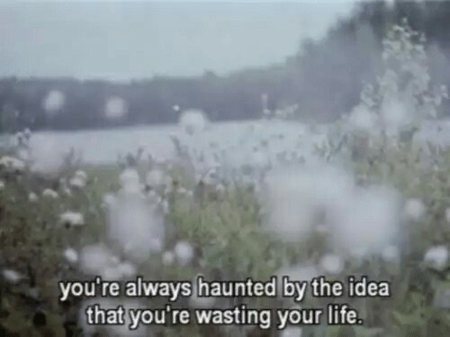 Life, Idea, and You: you re always haunted by the idea  that you're wasting your life
