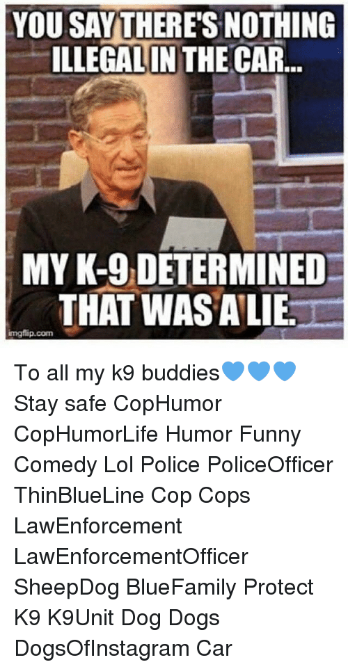 Cars, Dogs, and Funny: YOU SAY THERES NOTHING  ILLEGAL IN THE CAR  ILLEGALIN THE  MY K-9 DETERMINED  THAT WASALIE  mgflip.com  imgflip.com To all my k9 buddies💙💙💙 Stay safe CopHumor CopHumorLife Humor Funny Comedy Lol Police PoliceOfficer ThinBlueLine Cop Cops LawEnforcement LawEnforcementOfficer SheepDog BlueFamily Protect K9 K9Unit Dog Dogs DogsOfInstagram Car