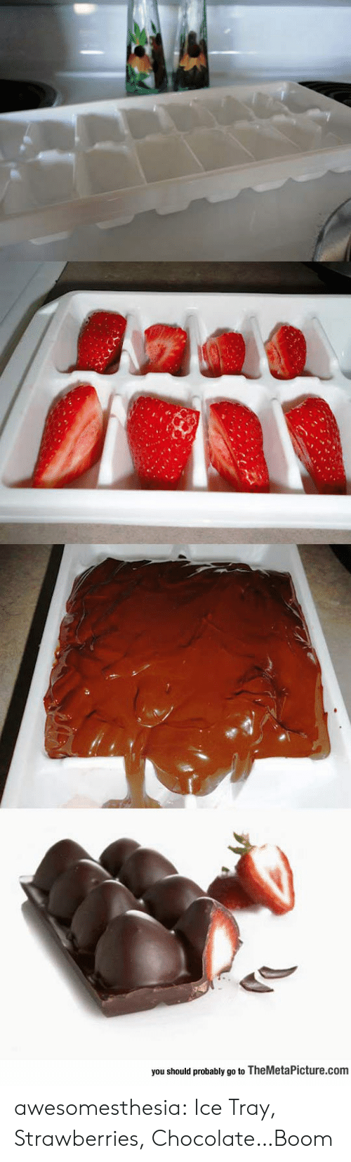 Tumblr, Blog, and Chocolate: you should probably go to TheMetaPicture.com awesomesthesia:  Ice Tray, Strawberries, Chocolate…Boom