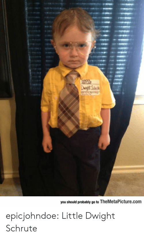 Should Probably: you should probably go to TheMetaPicture.com epicjohndoe:  Little Dwight Schrute