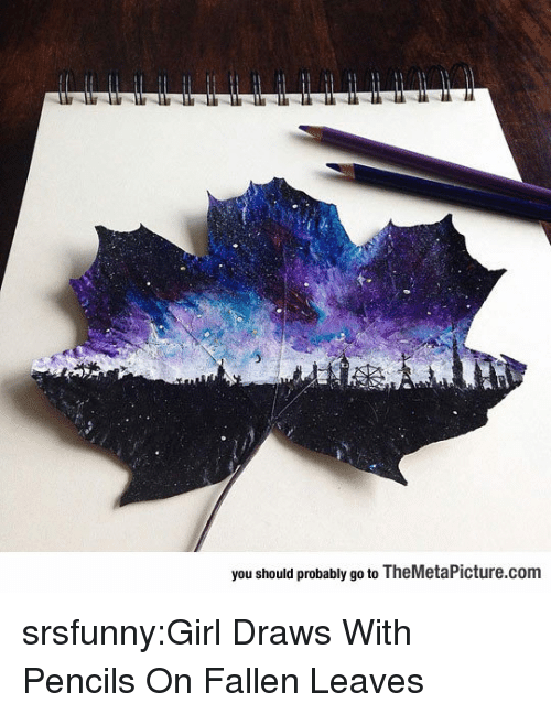 Tumblr, Blog, and Girl: you should probably go to TheMetaPicture.com srsfunny:Girl Draws With Pencils On Fallen Leaves