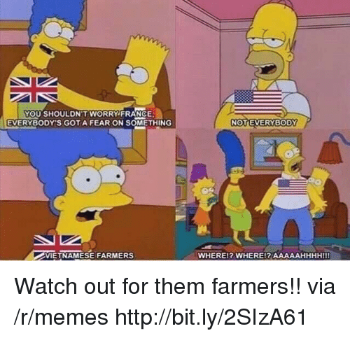 Memes, Watch Out, and France: YOU SHOULDN'T WORRY FRANCE  EVERYBODY'S GOTA FEAR ON SOMETHING  VIETNAMESE FARMERS  WHEREl? WHERE!? AAAAAHHHHIII Watch out for them farmers!! via /r/memes http://bit.ly/2SIzA61