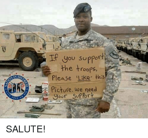 Memes, 🤖, and Picture: You suppor  the troops,  Please Like this  IN D  Picture, we need  or S  or SALUTE!