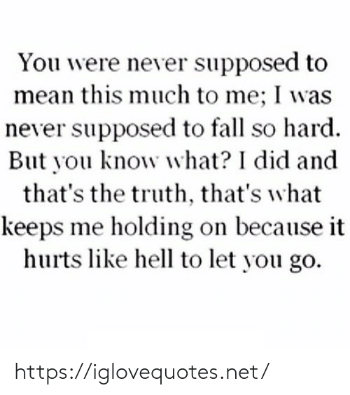 Fall, Mean, and Hell: You were never supposed to  mean this much to me; I was  never supposed to fall so hard  But you know what? I did and  that's the truth, that's what  keeps me holding on because it  hurts like hell to let you go https://iglovequotes.net/