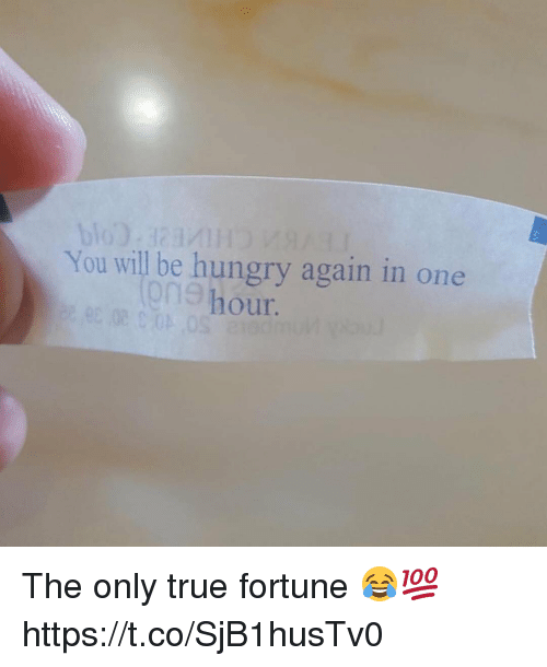 Hungry, Memes, and True: You will be hungry again in one  our.  9n9 h The only true fortune 😂💯 https://t.co/SjB1husTv0