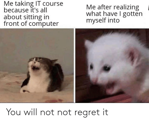 Will Not: You will not not regret it