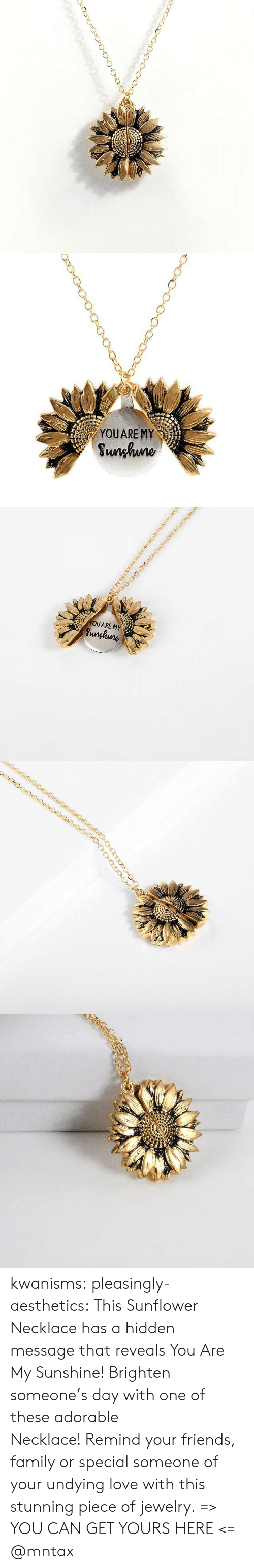 Family, Friends, and Love: YOUARE MY  Sunhuno   YOUARE MY  Sunghune kwanisms: pleasingly-aesthetics:  This Sunflower Necklace has a hidden message that reveals You Are My Sunshine! Brighten someone's day with one of these adorable Necklace! Remind your friends, family or special someone of your undying love with this stunning piece of jewelry. => YOU CAN GET YOURS HERE <=   @mntax