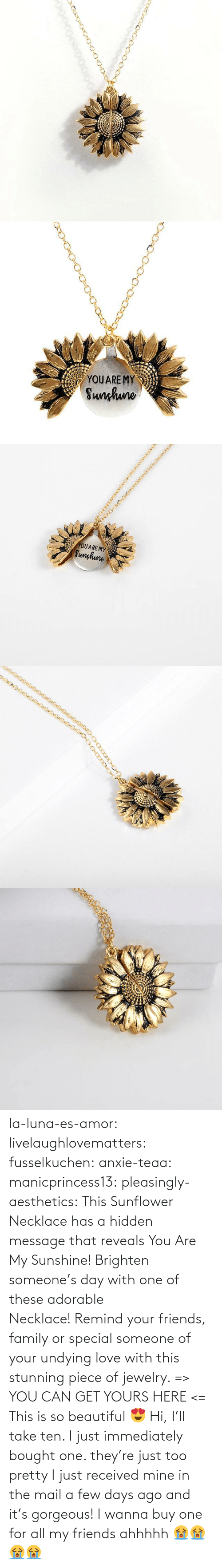 Beautiful, Family, and Friends: YOUARE MY  Sunhuno   YOUARE MY  Sunghune la-luna-es-amor:  livelaughlovematters: fusselkuchen:  anxie-teaa:   manicprincess13:   pleasingly-aesthetics:  This Sunflower Necklace has a hidden message that reveals You Are My Sunshine! Brighten someone's day with one of these adorable Necklace! Remind your friends, family or special someone of your undying love with this stunning piece of jewelry. => YOU CAN GET YOURS HERE <=   This is so beautiful 😍    Hi, I'll take ten.    I just immediately bought one. they're just too pretty   I just received mine in the mail a few days ago and it's gorgeous!   I wanna buy one for all my friends ahhhhh 😭😭😭😭