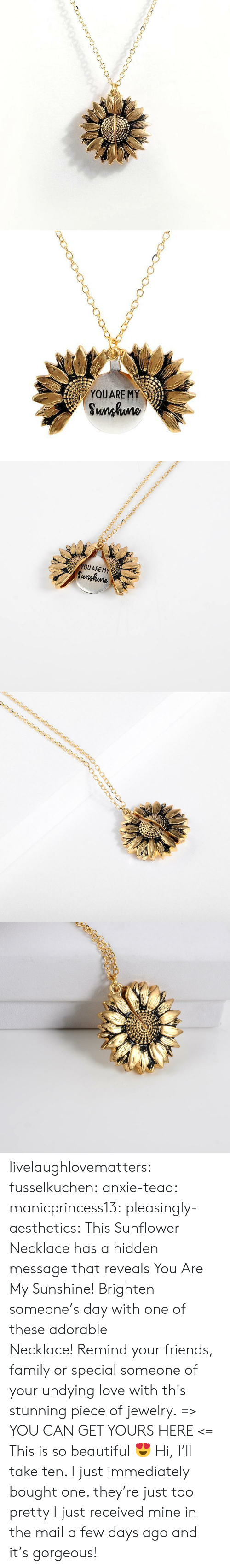 Beautiful, Family, and Friends: YOUARE MY  Sunhuno   YOUARE MY  Sunghune livelaughlovematters:  fusselkuchen: anxie-teaa:   manicprincess13:   pleasingly-aesthetics:  This Sunflower Necklace has a hidden message that reveals You Are My Sunshine! Brighten someone's day with one of these adorable Necklace! Remind your friends, family or special someone of your undying love with this stunning piece of jewelry. => YOU CAN GET YOURS HERE <=   This is so beautiful 😍    Hi, I'll take ten.    I just immediately bought one. they're just too pretty   I just received mine in the mail a few days ago and it's gorgeous!