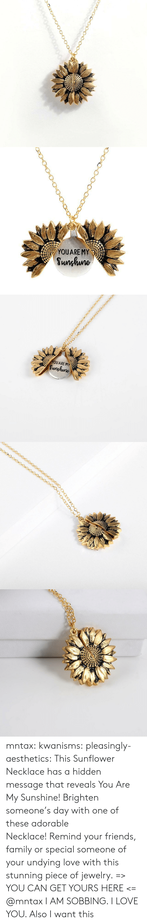 Family, Friends, and Love: YOUARE MY  Sunhuno   YOUARE MY  Sunghune mntax:  kwanisms:  pleasingly-aesthetics:  This Sunflower Necklace has a hidden message that reveals You Are My Sunshine! Brighten someone's day with one of these adorable Necklace! Remind your friends, family or special someone of your undying love with this stunning piece of jewelry. => YOU CAN GET YOURS HERE <=   @mntax   I AM SOBBING. I LOVE YOU. Also I want this