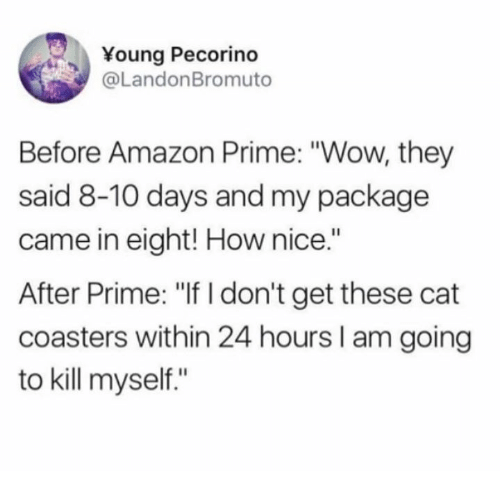 "Amazon, Amazon Prime, and Dank: Young Pecorino  @LandonBromuto  Before Amazon Prime: ""Wow, they  said 8-10 days and my package  came in eight! How nice.""  After Prime: ""If I don't get these cat  coasters within 24 hours I am going  to kill myself."""