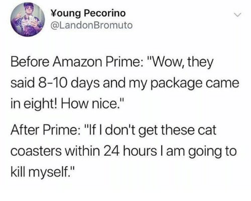 "Amazon, Amazon Prime, and Wow: Young Pecorino  @LandonBromuto  Before Amazon Prime: ""Wow, they  said 8-10 days and my package came  in eight! How nice.""  After Prime: ""If I don't get these cat  coasters within 24 hours l am going to  kill myself."""