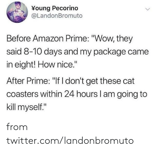 "Amazon, Amazon Prime, and Dank: Young Pecorino  @LandonBromuto  Before Amazon Prime: ""Wow, they  said 8-10 days and my package came  in eight! How nice.""  After Prime: ""If I don't get these cat  coasters within 24 hours l am going to  kill myself."" from twitter.com/landonbromuto"