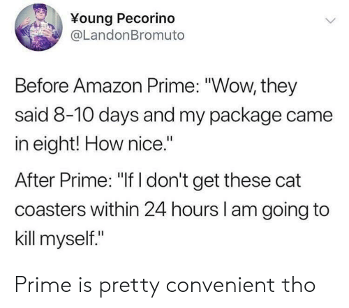 """Amazon, Amazon Prime, and Wow: Young Pecorino  @LandonBromuto  Before Amazon Prime: """"Wow, they  said 8-10 days and my package came  in eight! How nice.""""  After Prime: """"If I don't get these cat  coasters within 24 hours l am going to  kill myself."""" Prime is pretty convenient tho"""