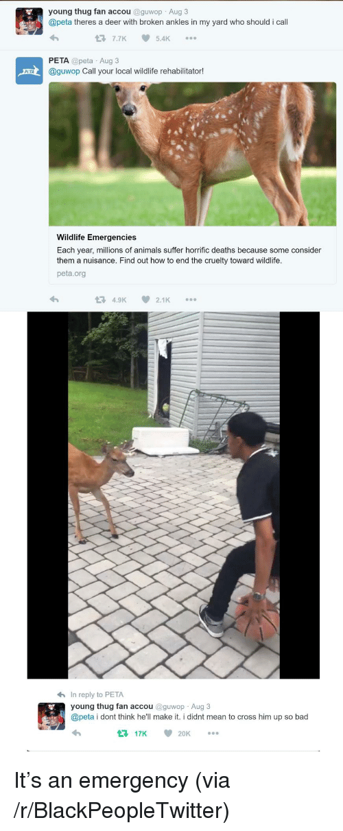 Animals, Bad, and Blackpeopletwitter: young thug fan accou @guwop Aug 3  @peta theres a deer with broken ankles in my yard who should i call  7.7K5.4K  PETA @peta Aug3  @guwop Call your local wildlife rehabilitator!  Wildlife Emergencies  Each year, millions of animals suffer horrific deaths because some consider  them a nuisance. Find out how to end the cruelty toward wildlife.  peta.org  4.9K  2.1K  h In reply to PETA  young thug fan accou @guwop Aug 3  @peta i dont think he'll make it. i didnt mean to cross him up so bad  17K 20K <p>It&rsquo;s an emergency (via /r/BlackPeopleTwitter)</p>