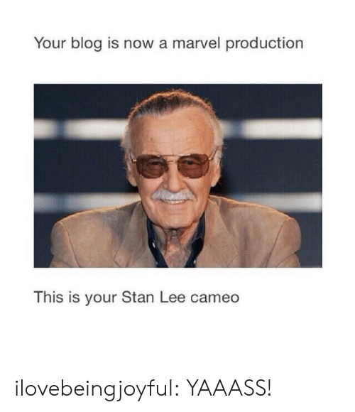 Stan, Stan Lee, and Tumblr: Your blog is now a marvel production  This is your Stan Lee cameo  IS IS ilovebeingjoyful: YAAASS!