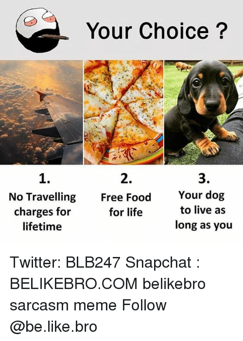 Be Like, Food, and Life: Your Choice?  1.  No Travelling  charges for  lifetime  2.  Free Food  for life  3.  Your dog  to live as  long as you Twitter: BLB247 Snapchat : BELIKEBRO.COM belikebro sarcasm meme Follow @be.like.bro
