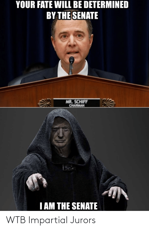 impartial: YOUR FATE WILL BE DETERMINED  BY THE SENATE  MR. SCHIFF  CHAIRMAN  I AM THE SENATE WTB Impartial Jurors