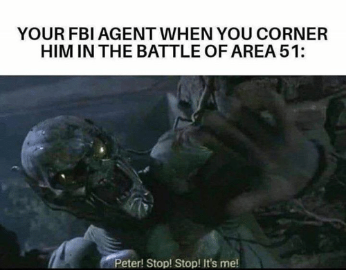 Fbi, Memes, and 🤖: YOUR FBI AGENT WHEN YOU CORNER  HIM IN THE BATTLE OF AREA 51:  Peter! Stop! Stop! It's me!