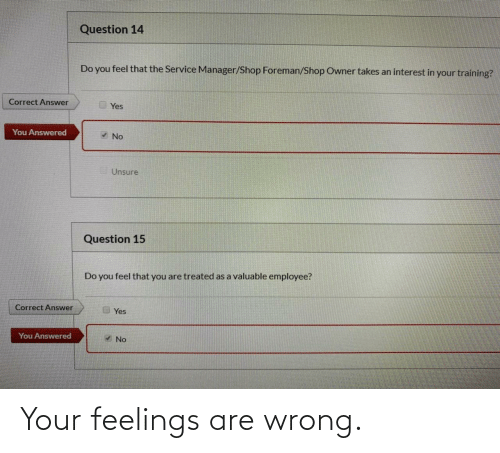 wrong: Your feelings are wrong.