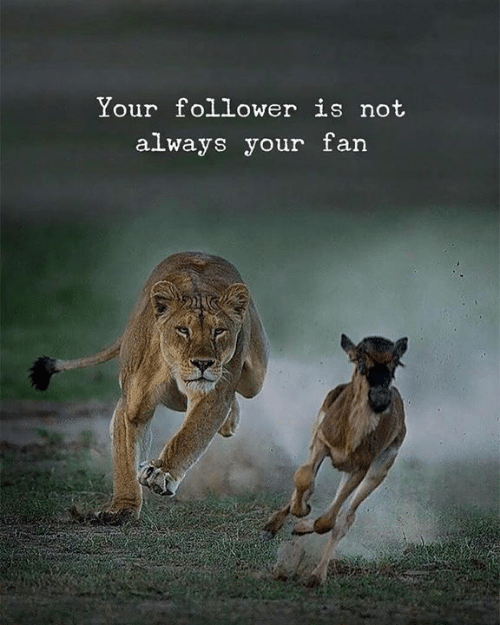 Always, Follower, and Not: Your follower is not  always your farn
