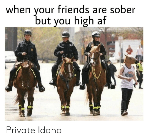 Af, Friends, and Sober: your friends are sober  but you high af  when  oshioif  OUNTED Private Idaho