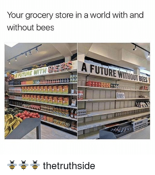 Memes World And Bees Your Grocery Store In A With Without