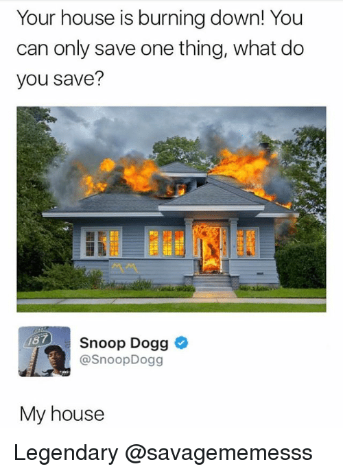 Dogges: Your house is burning down! You  can only save one thing, what do  you save?  Snoop Dogg  @SnoopDogg  87  My house Legendary @savagememesss