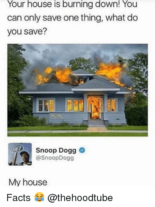 Facts, Memes, and My House: Your house is burning down! You  can only save one thing, what do  you save?  Snoop Dogg  @SnoopDogg  167  My house Facts 😂 @thehoodtube