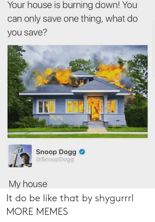 snoop dogg: Your house is burning down! You  can only save one thing, what do  you save?  187  Snoop Dogg  @SnoopDogg  My house It do be like that by shygurrrl MORE MEMES