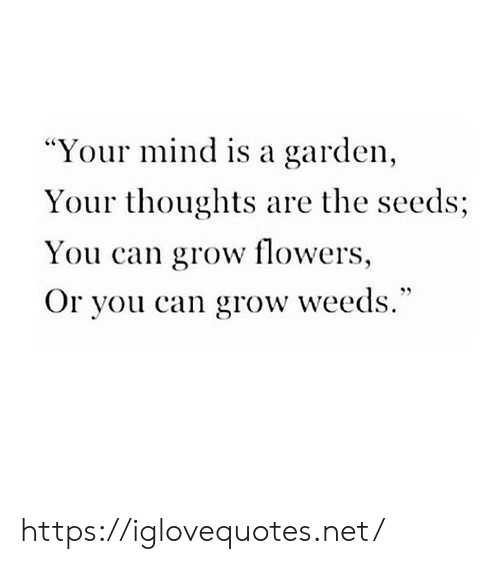 "Flowers, Mind, and Weeds: ""Your mind is a garden,  Your thoughts are the seeds;  You can grow flowers,  Or you can grow weeds."" https://iglovequotes.net/"