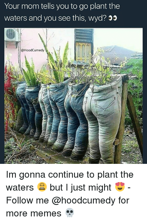 Memes, Wyd, and Relatable: Your mom tells you to go plant the  waters and you see this, wyd? 00  @HoodCumedy Im gonna continue to plant the waters 😩 but I just might 😍 - Follow me @hoodcumedy for more memes 💀