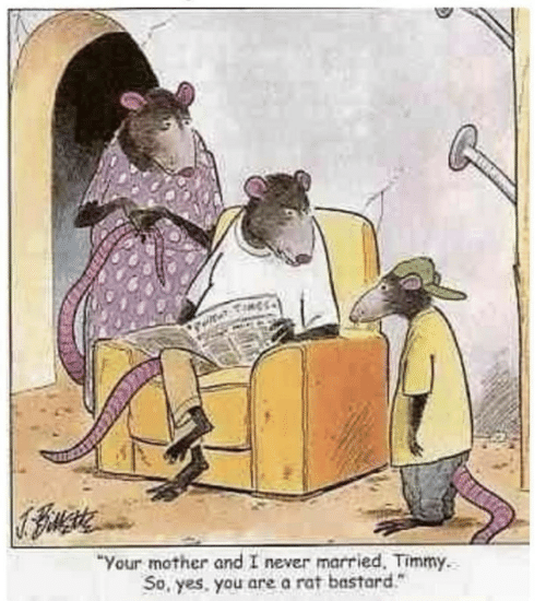 """Never, Yes, and Mother: """"Your mother and I never married. Timmy.  So, yes. you are a rat bastard"""