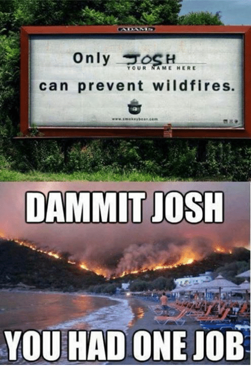 Memes, 🤖, and Wildfire: YOUR  NAME HERE  can prevent wildfires.  DAMMIT JOSH  YOU HAD ONE JOB