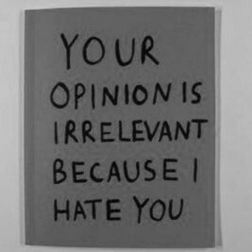 irrelevant: YOUR  OPINION IS  IRRELEVANT  BECAUSE I  HATE YOU