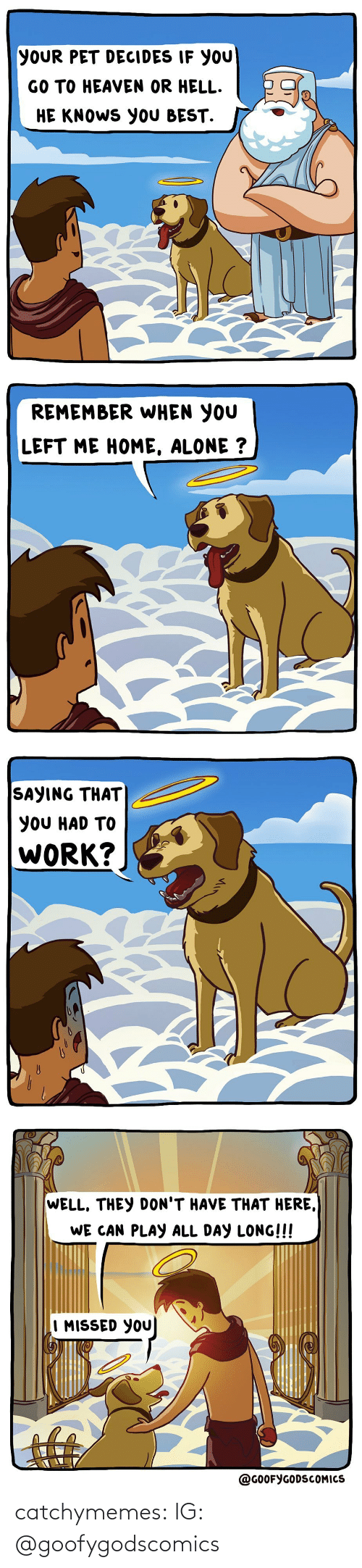 Home Alone: YOUR PET DECIDES IF YOU  GO TO HEAVEN OR HELL.  HE KNOWS YOU BEST.   REMEMBER WHEN YOU  LEFT ME HOME, ALONE ?   SAYING THAT  YOU HAD TO  WORK?   WELL, THEY DON'T HAVE THAT HERE,  WE CAN PLAY ALL DAY LONG!!!  I MISSED YOU  @GOOFYGODSCOMICS catchymemes:  IG: @goofygodscomics