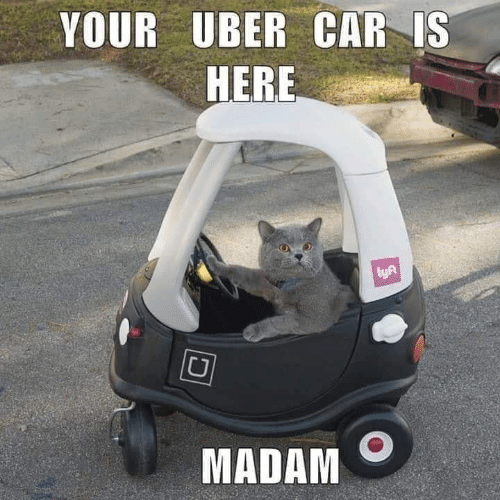 Memes, Uber, and 🤖: YOUR UBER CAR IS  HERE  lyA  MADAM