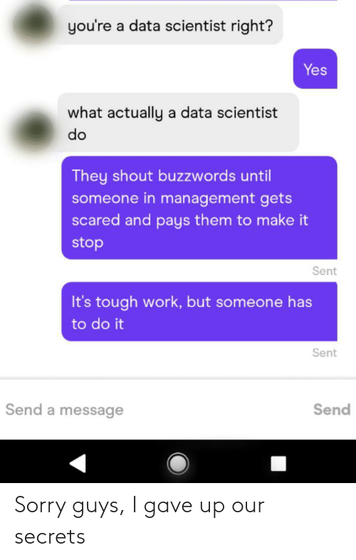 Youre A: you're a data scientist right?  Yes  what actually a data scientist  do  They shout buzzwords until  someone in management gets  scared and pays them to make it  stop  Sent  It's tough work, but someone has  to do it  Sent  Send a message  Send Sorry guys, I gave up our secrets
