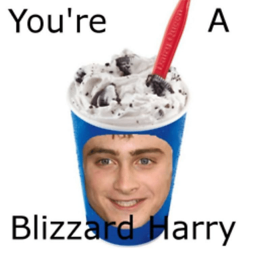 Memes, Blizzard, and 🤖: You're  Blizzard Harry