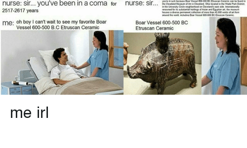 Asian, Cleveland, and Ohio: you're in luck because Boar Vessel 600-500 BC Etruscan Ceramic can be found in  the Cleveland Museum of Art in Cleveland Ohio located in the Wade Park District,  in the University Circle neighborhood on Clevelands east side. Intenationally  renowned for its substantial holdings of Asian and Egyptian art, the museum  houses a diverse permanent collection of more than 45,000 works of art from  around the world, including Boar Vessel 600-500 BC Etruscan Ceramic  2517-2617 years  me: oh boy I can't wait to see my favorite Boar  Boar Vessel 600-500 B  Etruscan Ceramic  Vessel 600-500 B.C Etruscan Ceramic me irl