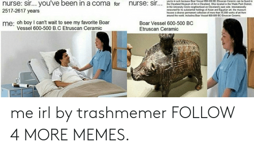 Asian, Dank, and Memes: you're in luck because Boar Vessel 600-500 BC Etruscan Ceramic can be found in  nurse: sir... you've been in a coma for  nurse: sir..  the Cleveland Museum of Art in Cleveland Ohio located in the Wade Park District,  in the University Circle neighborhood on Cleveland's east side. Internationally  renowned for its substantial holdings of Asian and Egyptian art, the museum  houses a diverse permanent collection of more than 45,000 works of art from  around the world. including Boar Vessel 600-500 BC Etruscan Ceramic.  2517-2617 years  me: oh boy I can't wait to see my favorite Boar  Vessel 600-500 B.C Etruscan Ceramic  Boar Vessel 600-500 BC  Etruscan Ceramic me irl by trashmemer FOLLOW 4 MORE MEMES.