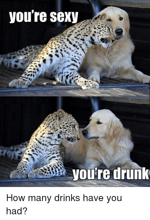 Youre Sexy: you're sexy  you're drunk How many drinks have you had?