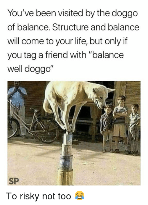 "Life, Been, and Doggo: You've been visited by the doggo  of balance. Structure and balance  will come to your life, but only if  you tag a friend with ""balance  well doggo  I1  SP To risky not too 😂"