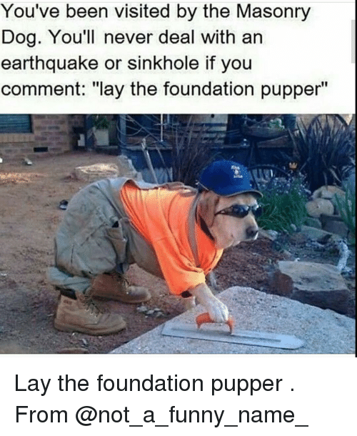 """Funny Namees: You've been visited by the Masonry  Dog. You'll never deal with an  earthquake or sinkhole if you  comment: """"lay the foundation pupper"""" Lay the foundation pupper . From @not_a_funny_name_"""