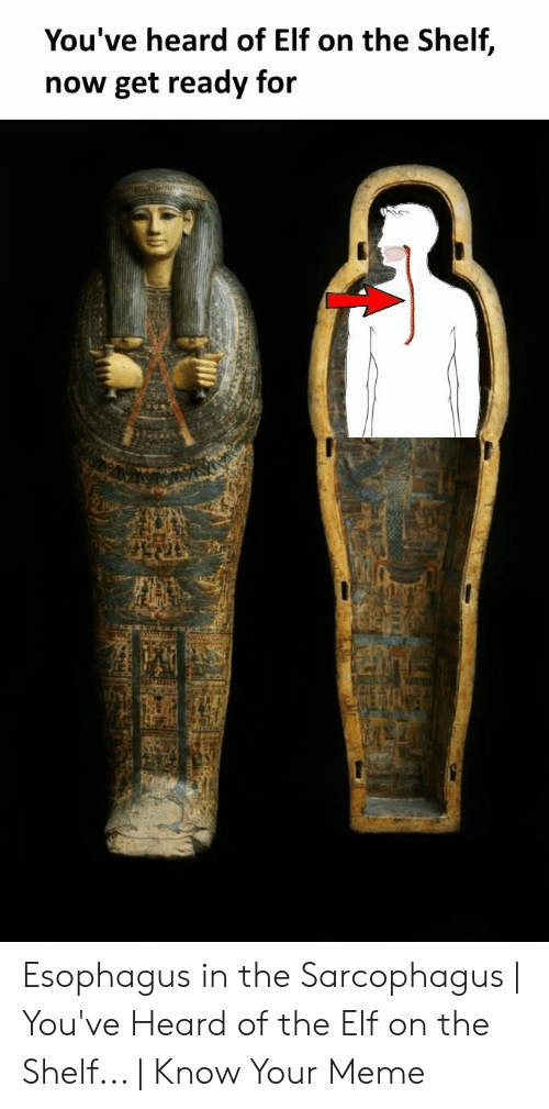Elf, Elf on the Shelf, and Meme: You've heard of Elf on the Shelf,  now get ready for Esophagus in the Sarcophagus | You've Heard of the Elf on the Shelf... | Know Your Meme