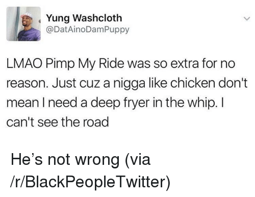 Blackpeopletwitter, Lmao, and Pimp My Ride: Yung Washcloth  @DatAinoDamPuppy  LMAO Pimp My Ride was so extra for no  reason. Just cuz a nigga like chicken don't  mean I need a deep fryer in the whip. I  can't see the road <p>He's not wrong (via /r/BlackPeopleTwitter)</p>